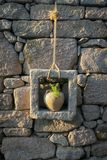 Ancient Flower Pot on stone wall stock photos