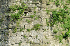 Ancient fortificated wall Royalty Free Stock Photos