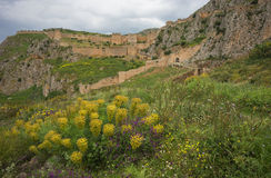 Ancient fortress on a hill with yellow flowers Royalty Free Stock Photos