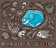 Ancient fossils, bones, leaves and skeletones set. Vector illustration. Archeology and paleontology. Prehistoric art. Cartoon Triceratops fossil, mammoth in ice Royalty Free Stock Images