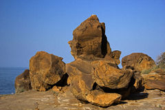 """Ancient Fossils at Kutch,India. """"India's ignored Treasures (Kutch Fossil Park ) at Kutch in Gujarat State."""" About 70 kms from Bhuj and 20 kms from Nakhtarana Stock Image"""