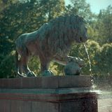 Ancient fountain. In the form of a bronze lion. 6x6 Royalty Free Stock Image