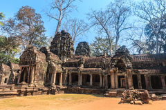 Ancient gallery of amazing Ta Prohm temple overgrown with trees. Mysterious ruins of Ta Prohm nestled among rainforest Stock Photos