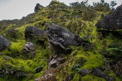 Ancient gloomy rocks covered with bright green moss royalty free stock photos