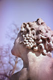 Ancient goddess of wine Royalty Free Stock Photo