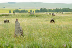 Ancient gravestone in the steppe of southern Siberia Royalty Free Stock Photography