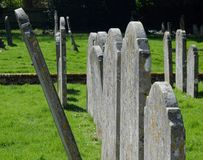 Out of Line. Ancient gravestones in cemetery. Ancient gravestones lined up in a cemetery. There is one rebel not standing to attention in the line and leaning royalty free stock photography