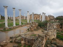 Ancient greek archeological site salamis Stock Image