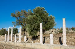 Ancient greek city ruins in Side, Turkey Stock Photography