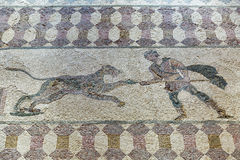 Ancient Greek floor mosaic in archaeologic park Kato Paphos, Cyprus. Royalty Free Stock Images
