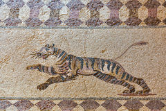 Ancient Greek floor mosaic in archaeologic park Kato Paphos, Cyprus. Royalty Free Stock Photos
