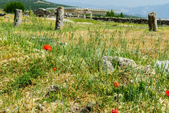 The ancient Greek and Roman city of Hierapolis Royalty Free Stock Images