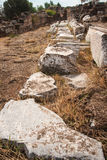 Ancient Greek ruins at the archaeological place of Ancient Elevs Stock Images