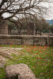 Ancient Greek ruins at the archaeological place of Ancient Olimp Royalty Free Stock Image