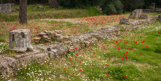Ancient Greek ruins at the archaeological place of Ancient Olimp Royalty Free Stock Photo