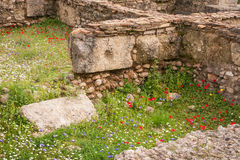 Ancient Greek ruins at the archaeological place of Ancient Olimp Stock Photos