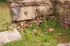 Ancient Greek ruins at the archaeological place of Ancient Olimp Royalty Free Stock Photography