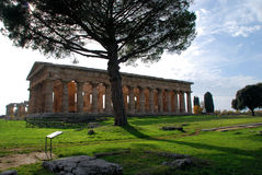 Ancient Greek temple. Ancient Greek stone temple of Neptune in Paestum, Italy royalty free stock images
