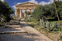 Ancient Greek Temple Ruins of Segesta Royalty Free Stock Image