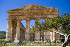 Ancient Greek Temple of Segesta Stock Images