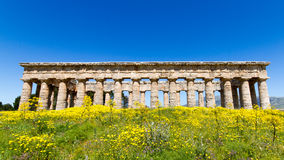 Ancient greek temple of Segesta Royalty Free Stock Images