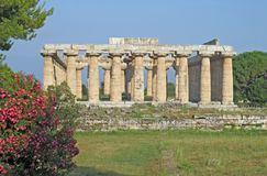 Ancient Greek temple for the worship of the gods in southern Italy Royalty Free Stock Photos