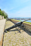 Ancient gun at San Sebastian (Donostia) Stock Image