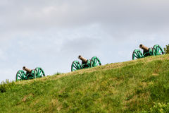 The ancient guns stand on the mountain. Close-up Royalty Free Stock Photos