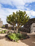 Ancient Harbour Fortifications, Fuerteventura Stock Photo