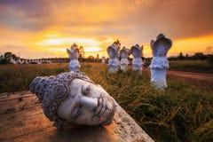 Free Ancient Head Buddha Statue At Sunset Stock Photo - 184173320