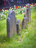 Ancient headstones. Ancient gravestones in an old church yard Stock Images