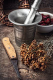 Ancient healing recipe of herbs Stock Photography