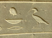 Ancient hieroglyphics on display outside Egyptian museum, Cairo. Egypt Royalty Free Stock Images