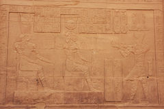 Ancient hieroglyphics on the wall of Philae Temple Royalty Free Stock Photography