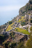 Ancient hillside garden of eze village. In the french provence Stock Photography