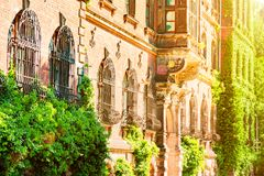 An ancient house full of flowers, the windows of the house are illuminated by the sun royalty free stock photo