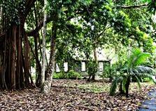 Ancient house hidden in a botanical garden, Mauritius Island stock photo