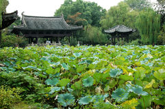 Ancient house with pond in china Stock Photography
