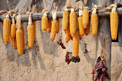 Corns in front of Ancient House Royalty Free Stock Photo