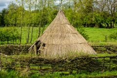 Traditional housing in thatched roof with surrounding hedge and green field and forest in background stock photo