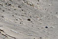 Ancient Human Bones. Chauchilla, an ancient cemetery in the desert of Nazca, Peru. The remains of many Stock Images