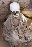 Ancient Human Bones - Femur and Jaw. A pile of human bones in Chauchilla, an ancient cemetery in the desert of Nazca, Peru. The remains of many people, some royalty free stock photography