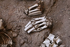 Ancient Human Bones - Hands and Vertebrae. A pile of human bones in Chauchilla, an ancient cemetery in the desert of Nazca, Peru. The remains of many Royalty Free Stock Photo