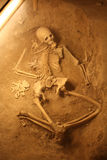 Ancient human skeletons Stock Images