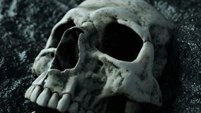 Ancient human skull. Apocalypse concept. Super realistic 4k animation.
