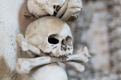 Ancient human skull and bone decoration in Sedlec, Czech republic. Kutna Hora.  stock photography