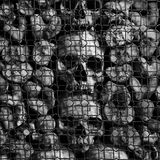 Ancient human skulls and bones Stock Image