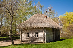 Ancient hut. Ancient Russian log hut and the trees Royalty Free Stock Photography