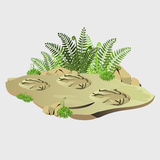 Ancient imprint of wild animal on earth Royalty Free Stock Images
