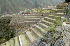 Ancient Inca archaeological terraces with lots of tourists Stock Photos
